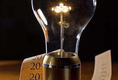 Bulbs' story